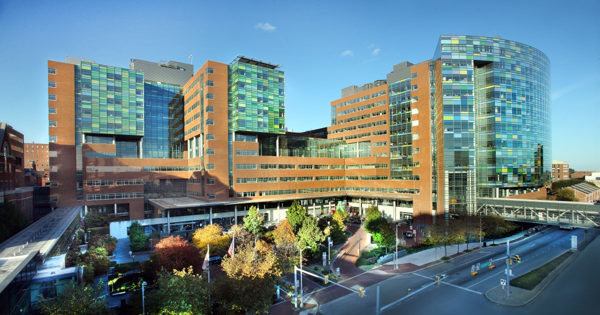 Tracking the success of Johns Hopkins' high-profile COVID-19 website thumbnail