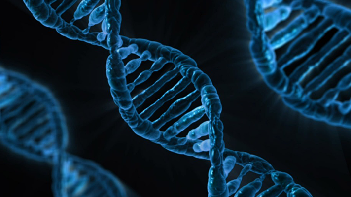 gene editing and cellular therapies