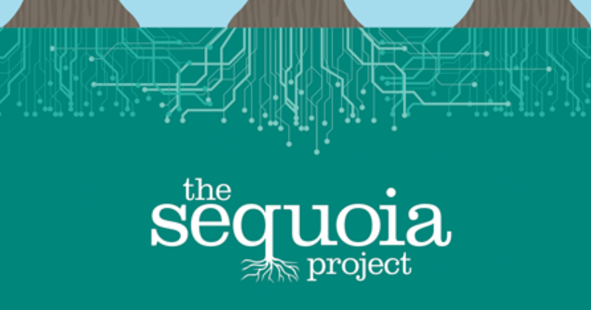 Sequoia Project sets sights on semantic interoperability with new guidance effort