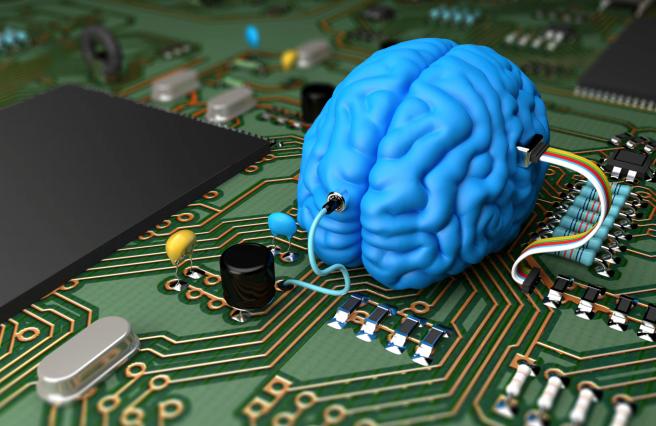 Brain on computer chip