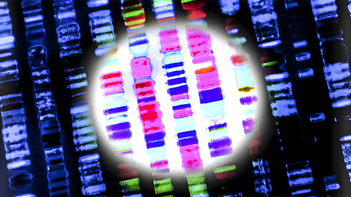 Precision med AI application can predict cellular DNA repair