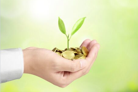 Holding coins with seedling