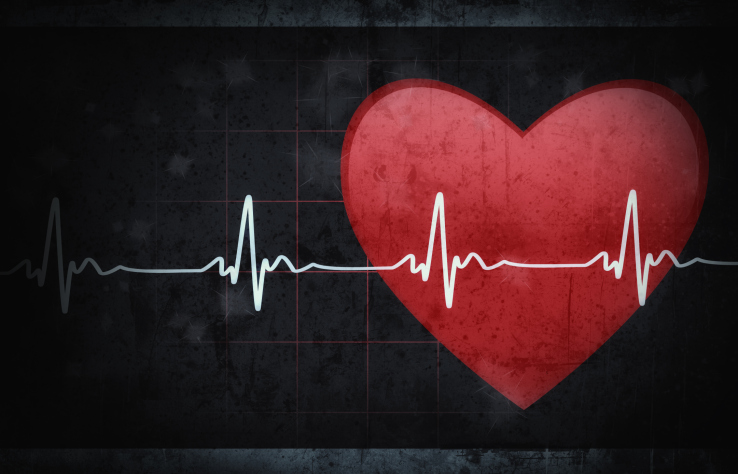 Heart with heart rate line