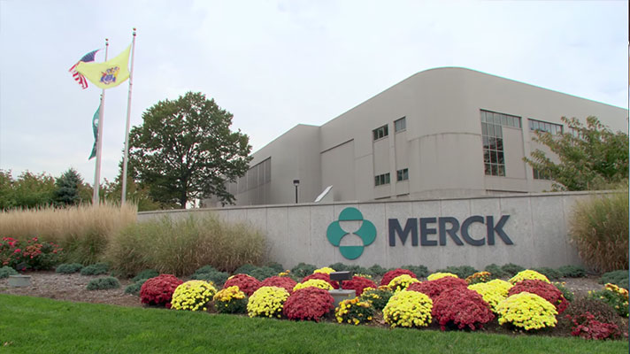 Petya cyberattack halts Merck production, hurts profits
