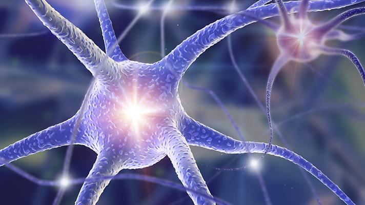 nerve regeneration tech