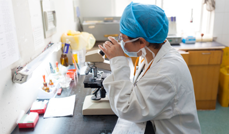 Weill Cornell, MSK take on TB research   Healthcare IT News