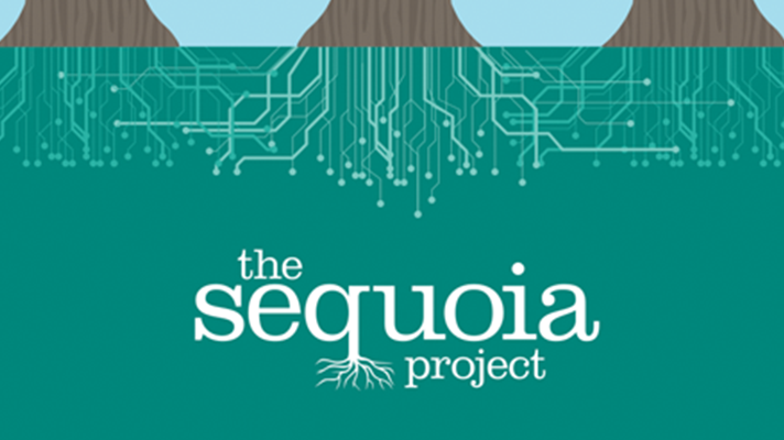 Sequoia Project sets sights on info blocking with new workgroup