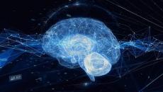 AI brain illustration.