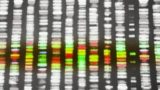 analyzing genomic data dna