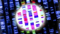 CRISPR precision medicine