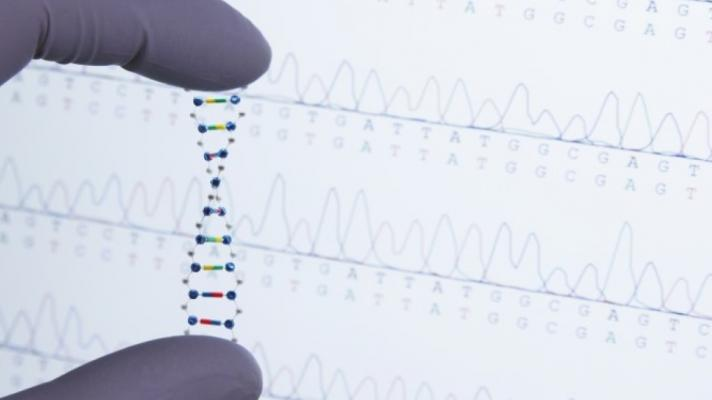precision medicine - fingers hold strand of DNA